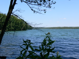Lake Hancza is only 200 metres away with clean water for swimming